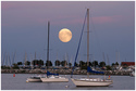 Full Moon over Reefpoint Marina by Carol Hansen