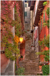 Narrow Stepped Lane by Carol Hansen
